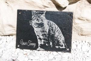 Tiergrabstein, Tiergedenkstein von einer Katze