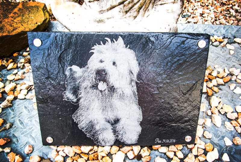 Schiefer Tiergrabstein, Tiergedenkstein für Hunde
