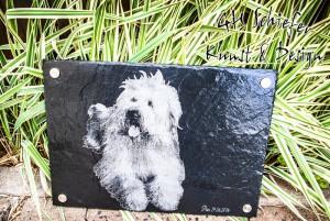 Schiefer Tiergrabsteine, Tiergedenksteine für Hunde