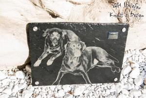 Tiergrabstein mit Foto vom Hund als Erinnerung