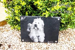 Tiergrabstein, Tiergedenkstein für Hunde