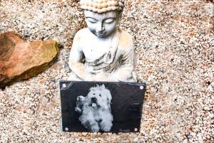 Schiefer Tiergrabstein Hund